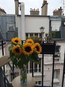 Sunflowers, Paris balcony